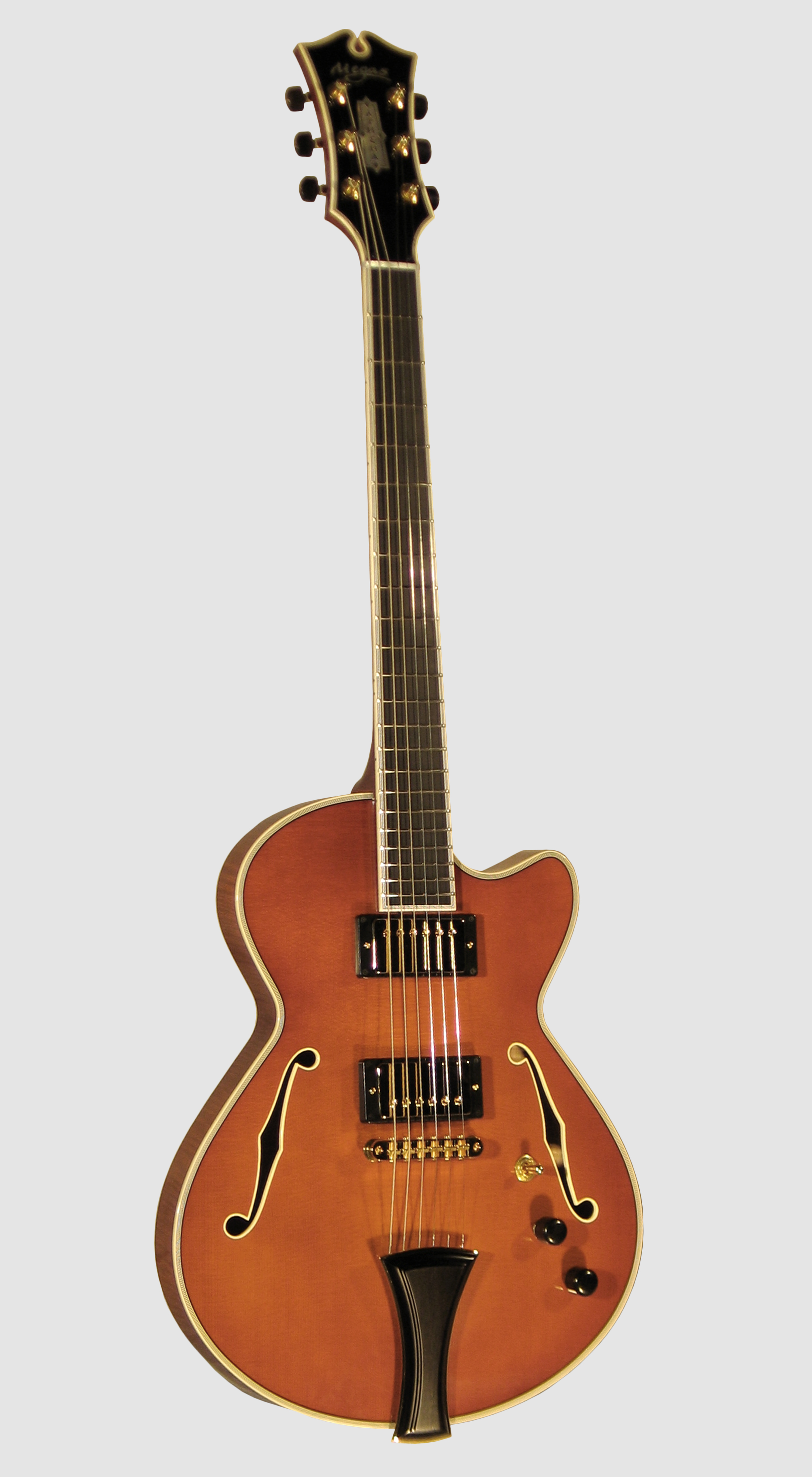 11 Thinline Guitar Boolos Front