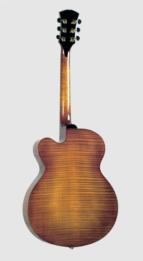 Back view burkhardt Apollo Archtop Represent