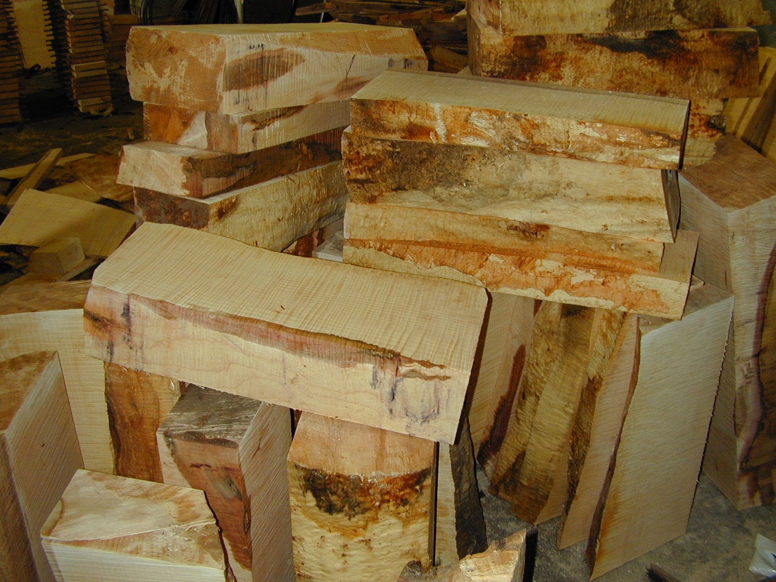 Green (still wet) curly maple billets